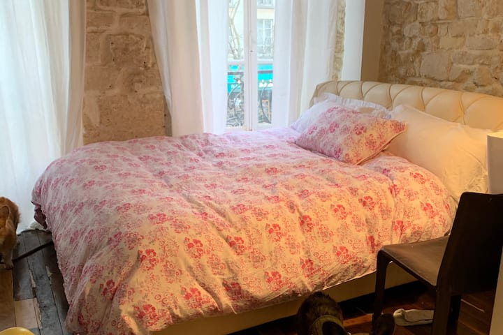 "Beautiful bedroom in historical ""Le Marais"""