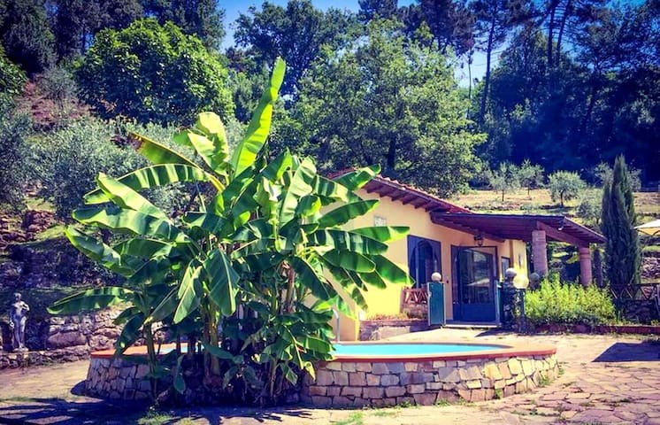 -35% off -Tuscany near Lucca-private pool ALL INCL - San Martino In Freddana-monsagr - Talo