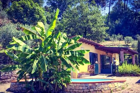 Tuscany near Lucca - private pool - ALL INCLUSIVE - San Martino In Freddana-monsagr - Hus