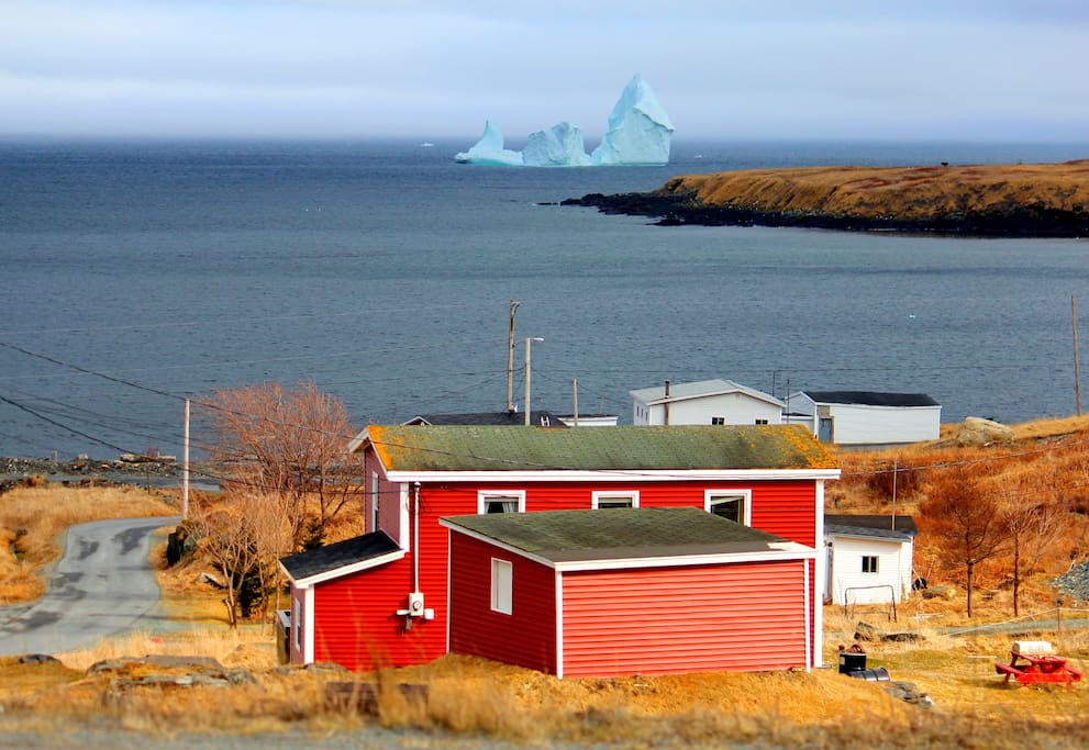 Iceberg in Ferryland just in front of The Valley House.
