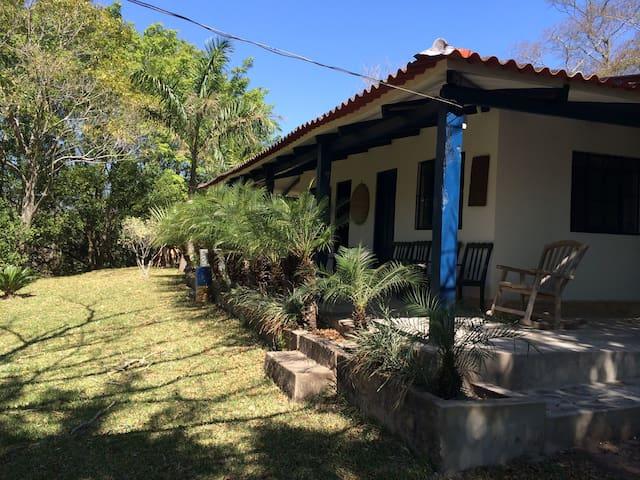 Jorochito Palms ,santuario de las palmeras