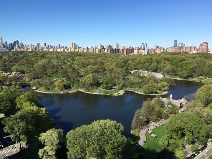 Central Park Nest, High Above The Trees!