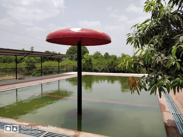 swimming pool with mushroom umbrella