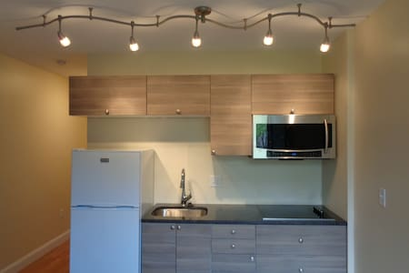 Modern Apartment in Downtown Hartford - Hartford - Apartment