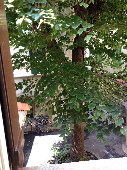 La vista dalla finestra della prima camera