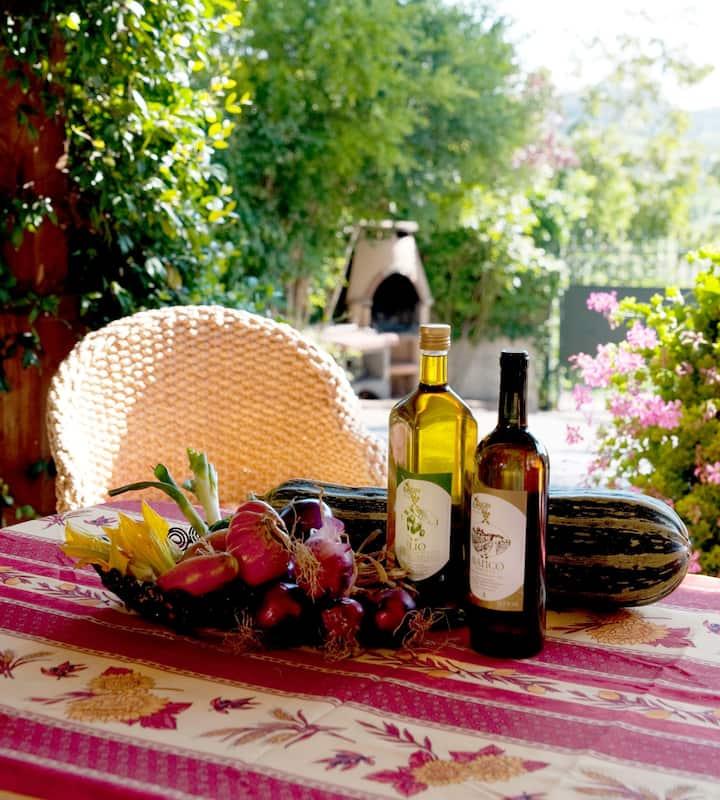 Buon Riposo -Vacation in Tuscany 6