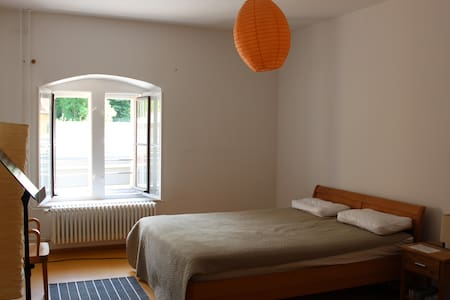 nice room for 1 or 2 persons - Regensburg