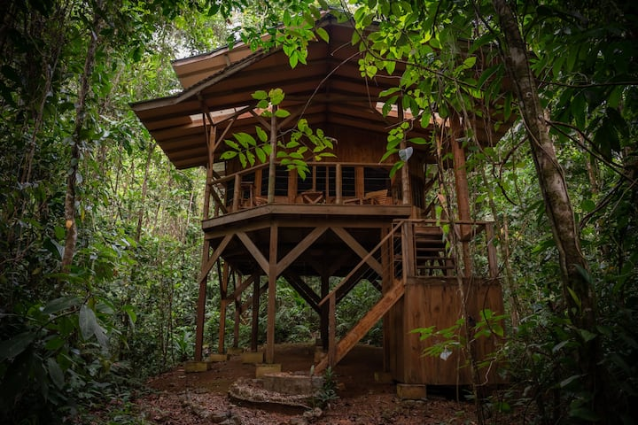 Casa Perezosa; Pure Paradise In the Rainforest