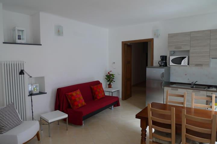 Bottega, Ampio appartamento piano terra