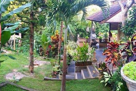 Jungle View, Ubud Centre, AC - Ubud