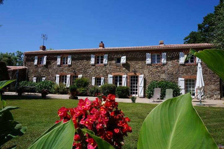 Charming B&B near Brittany & Nantes - Legé - Bed & Breakfast