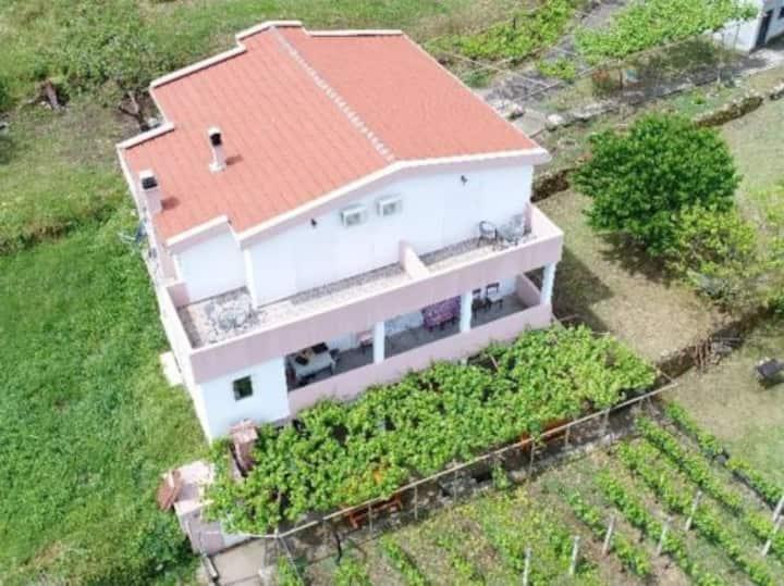 Vržina Farm House