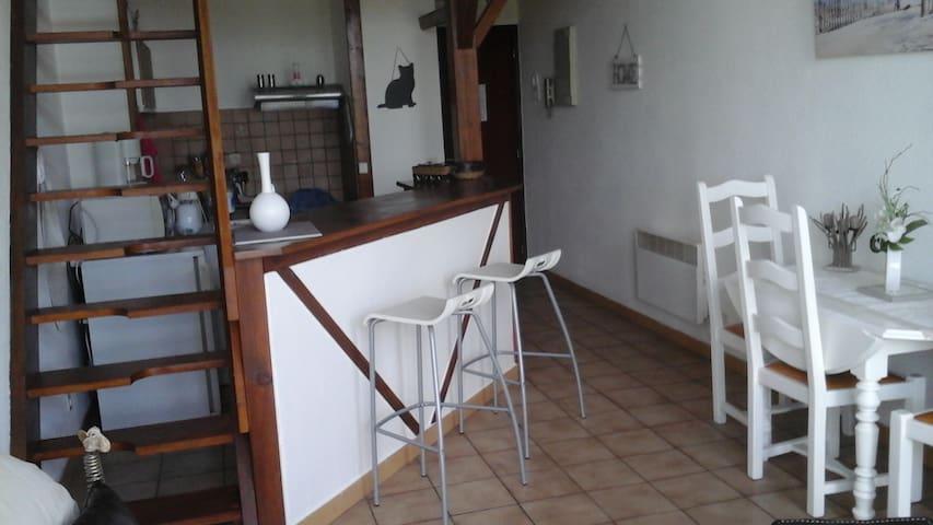 Appartement dans résidence - Meschers-sur-Gironde - Apartment