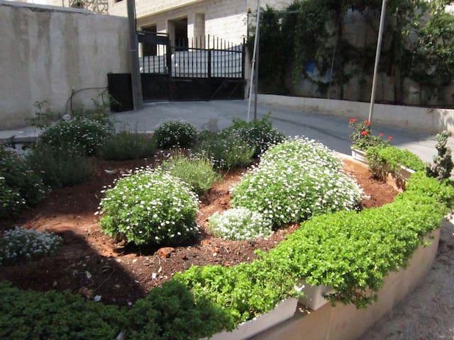 Ramallah International Shared House - رام الله