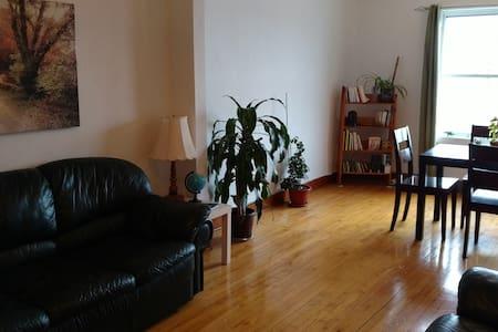 Grand et lumineux 4 1/2 - Saint-Hyacinthe - 公寓
