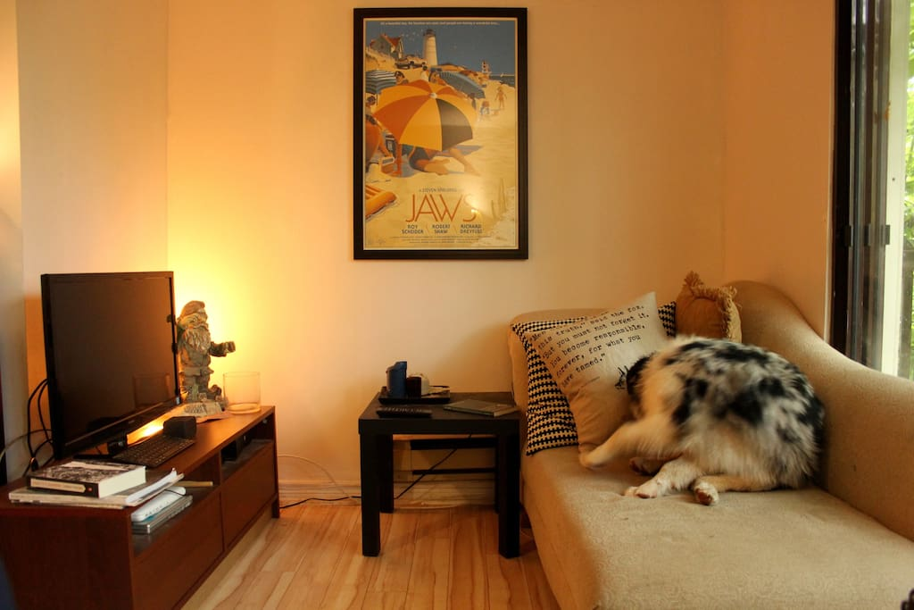 The TV nook! Awkward puppy not included (but feel free to bring your own).