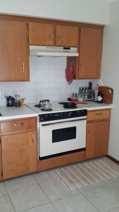 Kitchen is ready for use. Basic necessities available.