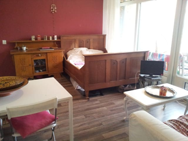Big room in nice and cosy apartment - ユトレヒト