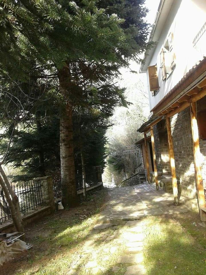 Cozy ground mountain resort