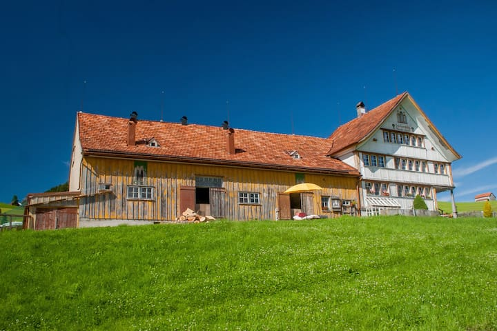 Traditional Appenzell Farmhouse  - Appenzell District - Dům