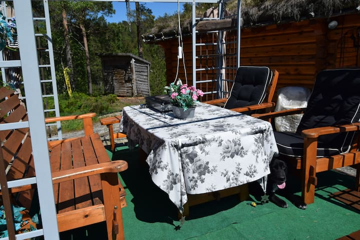 Hytte med badestamp og kos - marnadal - Cottage