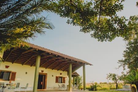 Granma Milia's House, Lefkochori - Lefkochori