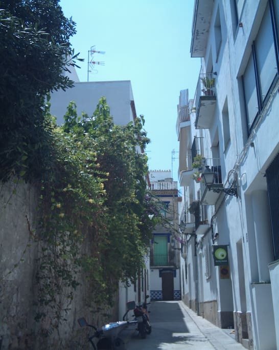 Jafra Street