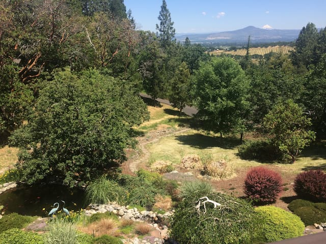 Koi pond and view of Mt. Mcloughlin