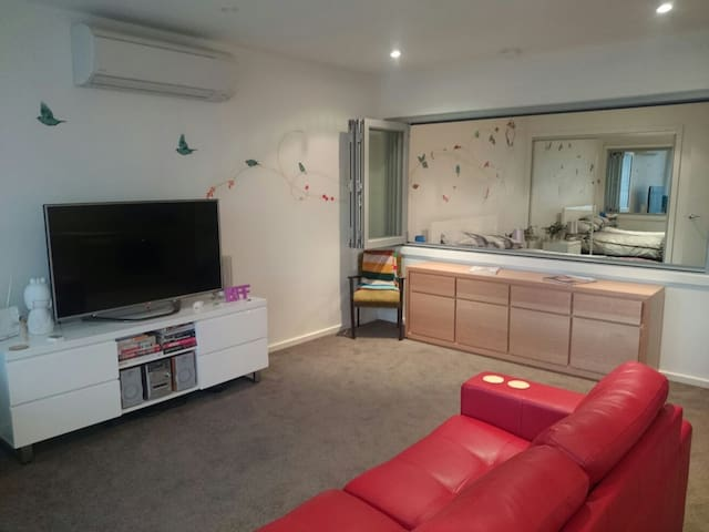 Fun one bedroom apartment :) - Braddon