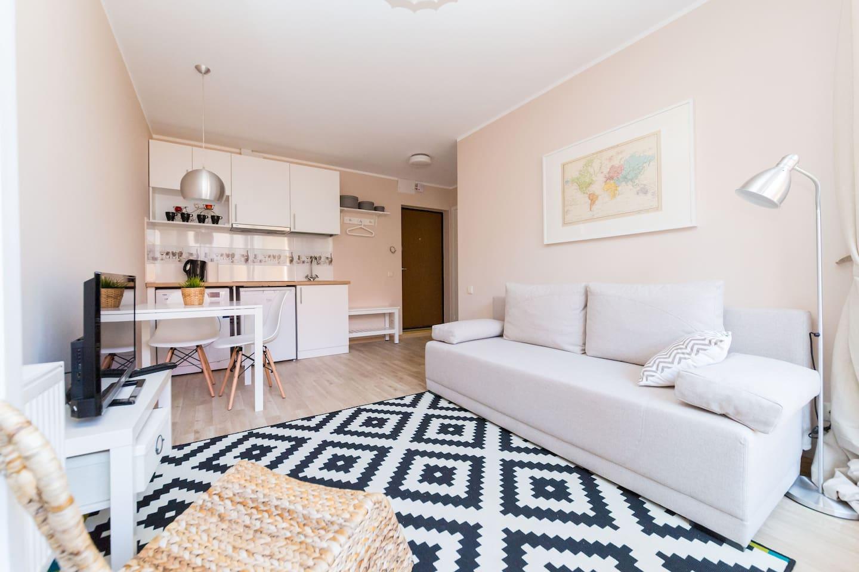 Carpet, sofa/bed