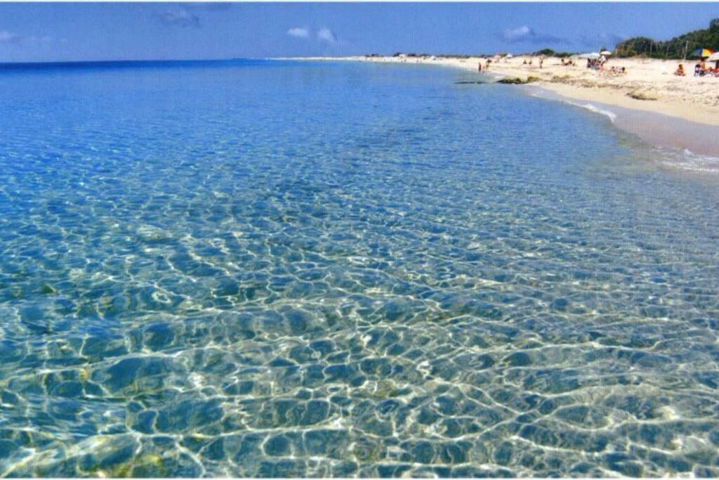 L'acqua cristallina e il fondale basso adatto a bambini e chi non sa nuotare