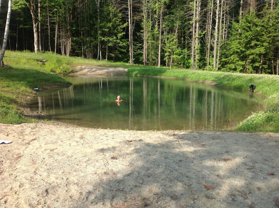 Take a dip in the pristine pond on the property- 1 minute walk from the guest apartment entrance.