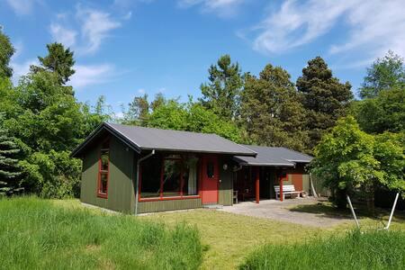 Naturskønt og hyggeligt sommerhus