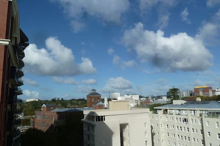 Cosy Aukland City apartment - two bedrooms - Comfy - Auckland