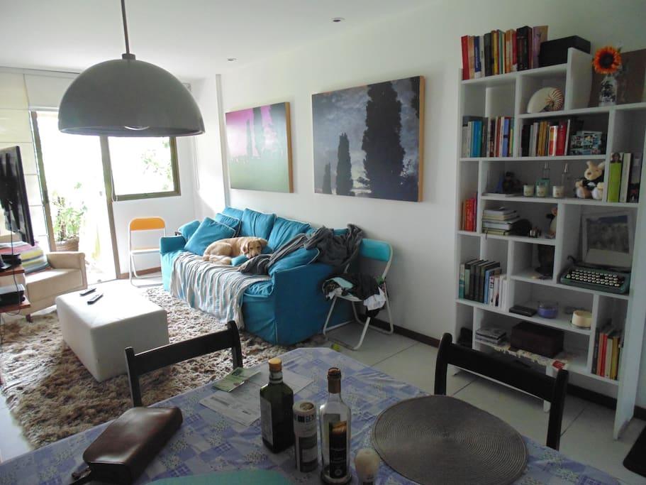 sala de estar com a Nala no sofá
