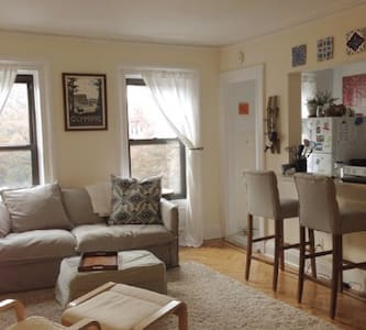 Sunny&Peaceful 1 BR- Clinton Hill - Brooklyn - Apartment
