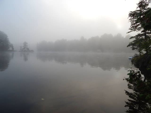 Early morning mist