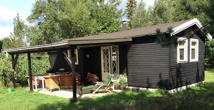 Charmerende lille sommerhus, 50 m2