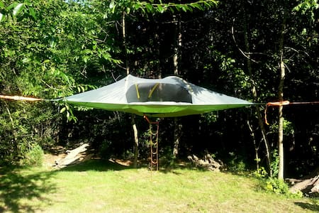 Boutique Urban Camping in the Trees - Chattanooga