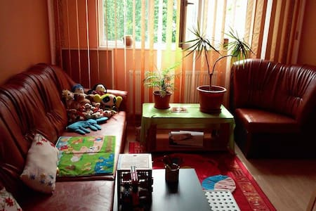 Beautiful & Cozy Campina Appartment - Câmpina - Byt