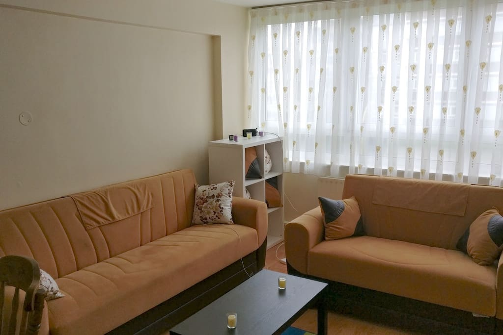 Living room with dinning table and sofas