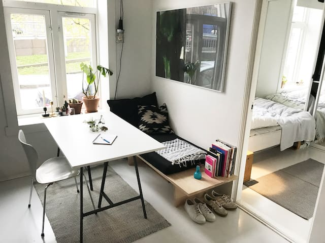 Cozy studio apartment in downtown Oslo