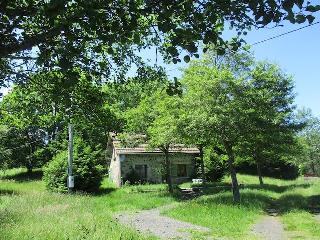 Petite maison dans la prairie face au SANCY - Chastreix - House