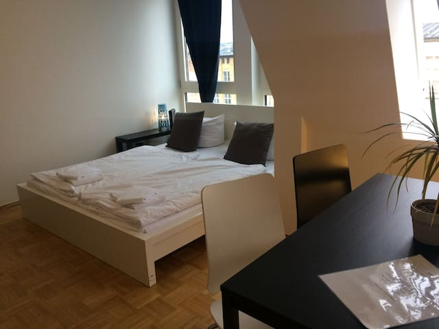 Flats for 6 persons in center of Berlin (5/6.1+4)
