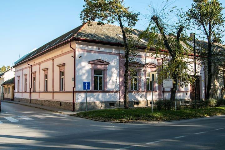 Vila Olga - Sombor - 家庭式旅館