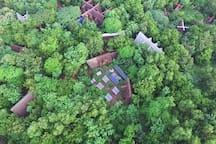 Sadhana forest Auroville