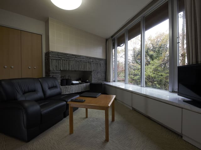 Hakone Hot spring lake view room with unit bath
