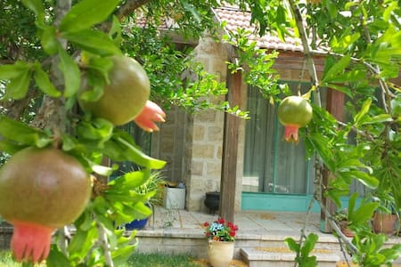 beautiful house-magical surrounding - Jerusalem - Villa