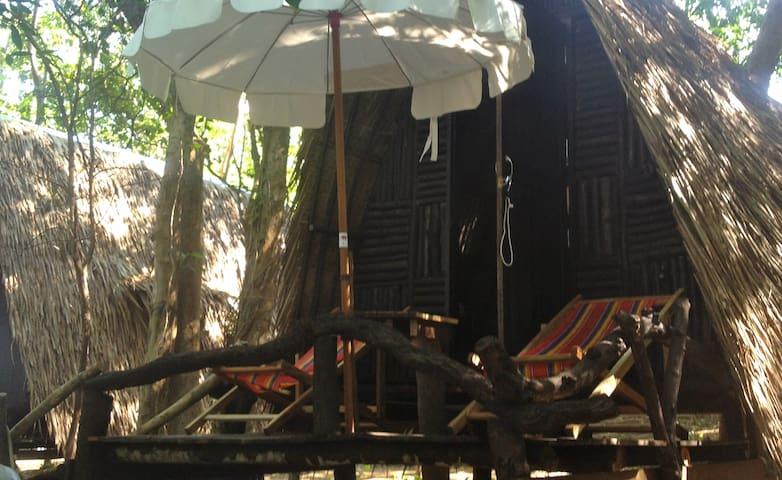 Noina's Mystic Mountain Hut 3