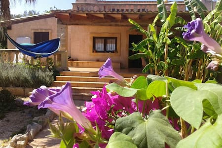 Finca Countryhouse with pool - Manacor